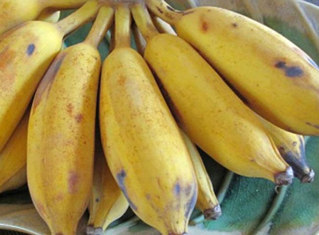 Hanoi Banana Tapioca Pudding