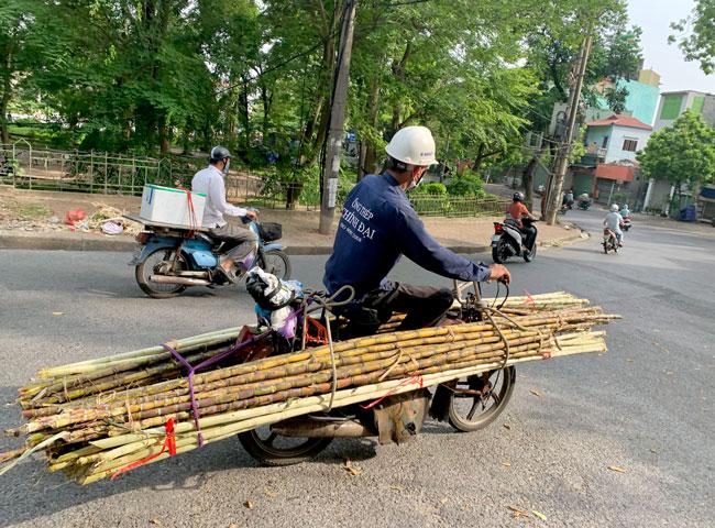Sugarcane on motorbike